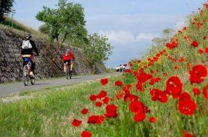 fietsen op Via Verde